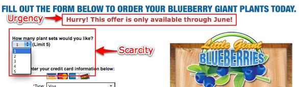 scarcity-urgency